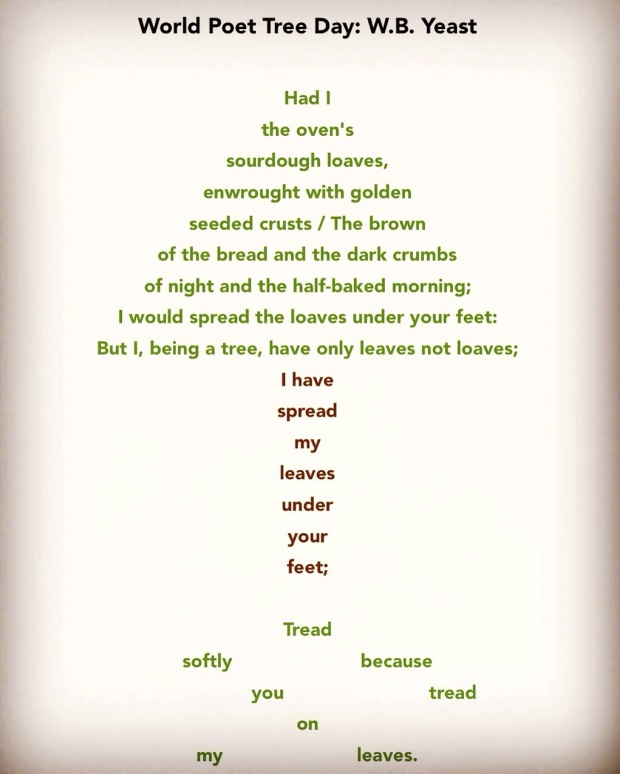 Poem About A Christmas Tree: Brian Bilston's Poetry Laboetry